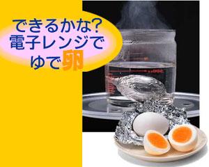 家計に優しい♡鶏ムネ肉を使った人気レシピ18品